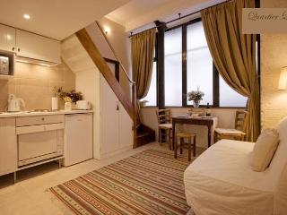 Super Central Apartment in the Historic Latin Quarter of Paris - Paris vacation rentals
