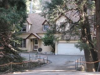 Grannys in Springtime - Granny Gert's Large Creekside Cabin Sleeps 20 - Lake Arrowhead - rentals
