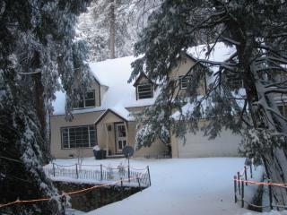 Granny Gert's Large Creekside Cabin Sleeps 20 - Lake Arrowhead vacation rentals