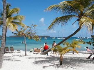 Beachtops..St Thomas - Great Cruz Bay vacation rentals