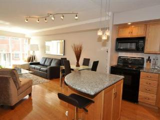 My Urban Oasis Downtown!  Entertainment District ! - Toronto vacation rentals