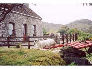 the cottage - Traditional cosy  Stone Cottage with sea views - Kenmare - rentals