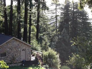 Santa Cruz Mountains Dragonfly Cottage Rental - Corralitos vacation rentals
