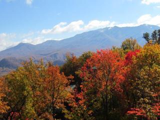Beautiful Mountain Views, 2 Kings+, WIFI & More! - Gatlinburg vacation rentals