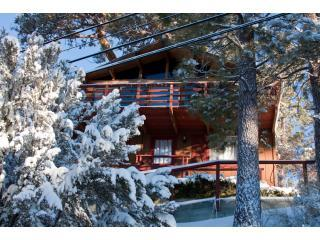Treehaus Chalet - Treehaus Chalet with Panoramic Views of Mountains - Big Bear Lake - rentals
