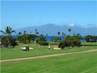 Maui Eldorado: Maui Condo A203 - Ka'anapali vacation rentals