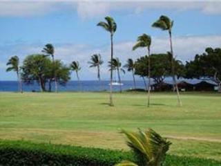 Maui Eldorado: Maui Condo J206 - Image 1 - Ka'anapali - rentals
