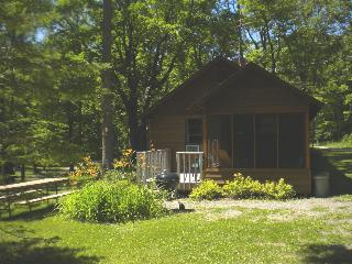 Over the River and Through the Woods #1 - Deer River vacation rentals