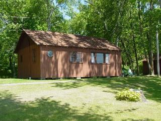 Cozy 3 Bedrm by Lake #3 - Deer River vacation rentals