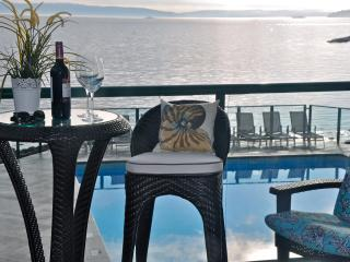 New Luxury Condo~Steps to Ocean~Panoramic View - Nanaimo vacation rentals