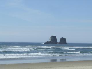 Beachside Cottage at Twin Rocks - Netarts vacation rentals