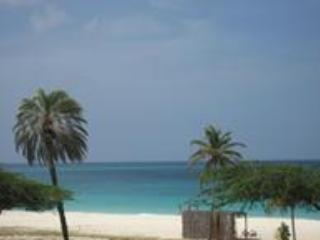 Aruba's Best BeachFront Property-Look No Further! - Palm/Eagle Beach vacation rentals