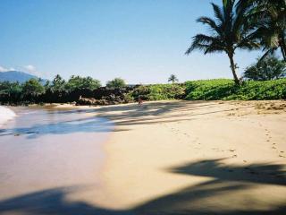 Elegant 2 bedroom Ocean/Beach front home  So. Maui - Kihei vacation rentals