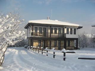 Pirin Chalet - Bansko - with Jacuzzi. - Bansko vacation rentals
