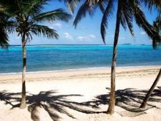 Caribbean Paradise on the Beach - waiting for you - Christiansted vacation rentals