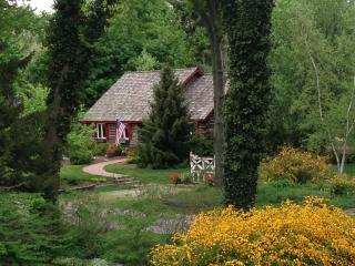 Charming Cabin - Private Beach/Harbor Shores Golf - Bridgman vacation rentals