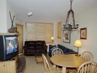 Silvermill, Large 1 BR Condo, King Bed, Low Rates - Dillon vacation rentals