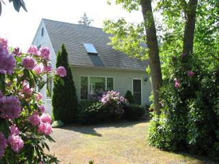 Beautiful Modern Cape Near Craigville Beach - West Hyannisport vacation rentals