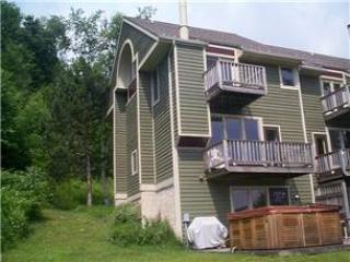 608-V.O. W. Slopeside #29 - Image 1 - McHenry - rentals