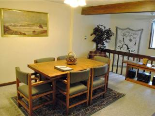 629-Ski Cove Unit 2 - McHenry vacation rentals
