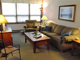 665-Ski Harbor Unit 15 - McHenry vacation rentals