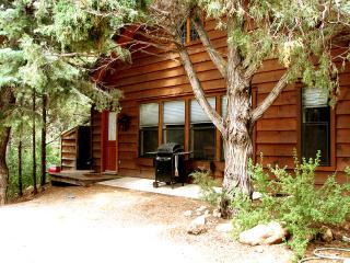 El Salto Guest Cabin - Taos vacation rentals