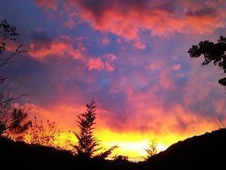 Asheville's Euphoria Retreat Mountain Preserve - Marshall vacation rentals