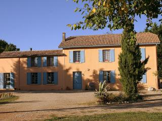 Chateau Lavanau, wine producing estate, pool, park - Loubes-Bernac vacation rentals