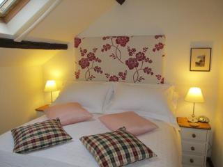 Red Kite Cottage a luxury 4* country hideaway - Lampeter vacation rentals