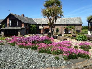 Japonica Cottage, Ocean Views in North Devon - Bideford vacation rentals