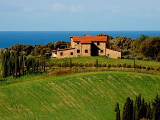 Podere Novo Bibbona-for a pleasant Tuscany Holiday - Casale Marittimo vacation rentals