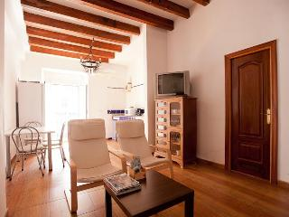 Deluxe 2Bedroom Apartment-Sevilla Old city Center - Seville vacation rentals