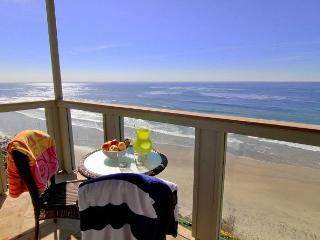 Oceanfront rental with 7br, 5ba, private spa, patio, endless ocean views - Encinitas vacation rentals