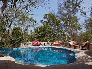 One Bedroom Apartment with Pool on Beach property - Diani vacation rentals