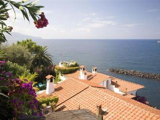 Mediterranean tower- style beach house built in 1945. YPI TRO - Sorrento vacation rentals