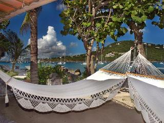 Beach Villa St John  5 bedroom pool hot tub - Saint John vacation rentals