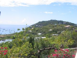 Poi Pu St John Villa - great views & total privacy - Ajax Peak vacation rentals