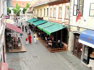 Maribor Guba Apartment - Destrnik vacation rentals