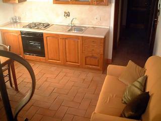 Lirica - Poeta - Castelnuovo di Val di Cecina vacation rentals