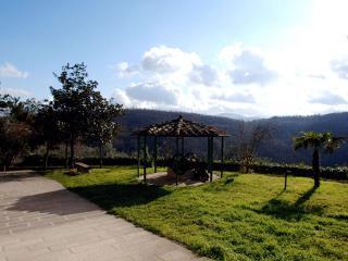Borgo Anghiari - Orcio - Anghiari vacation rentals