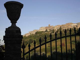 Rondine - Monteriggioni vacation rentals