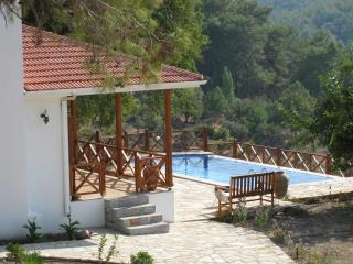 Keci Evi. Fully restored village property. Full A/ - Dalyan vacation rentals