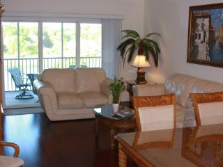 Beautiful Waterfront Canopy Walk Condo! - Palm Coast vacation rentals