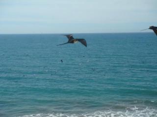 Endless Ocean and Sky!!! - Mazatlan vacation rentals
