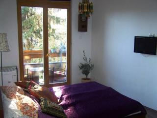 Cozy studio at the Castle with balcony and garden - Central Hungary vacation rentals