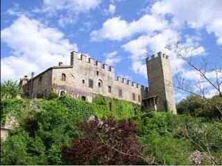 Torre del Vescovo -- Medieval Castle in Tuscany - Badia Agnano vacation rentals