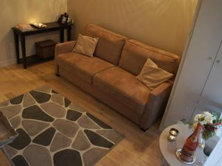 Studio Pantheon - Latin quarter area - Paris vacation rentals