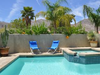 EcoFriendly Desert Oasis, Salt Pool, 3BR View Home - California Desert vacation rentals