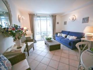 Palais des Fleurs, Excellent 2 Bedroom Cannes Apartment near Palais des Fleurs - Golfe-Juan Vallauris vacation rentals