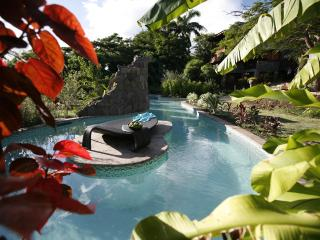 CLV Luxury fully staffed Flamboyant Villa - Gros Islet vacation rentals